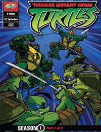 Teenage Mutant Ninja Turtles (2003) Season 01
