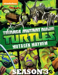 Teenage Mutant Ninja Turtles (2012) Season 3